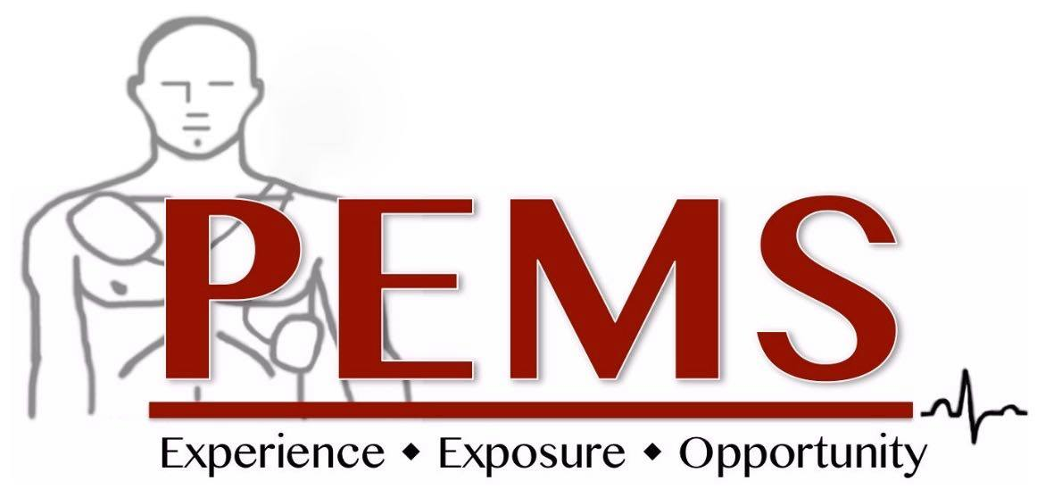 official-pems-logo
